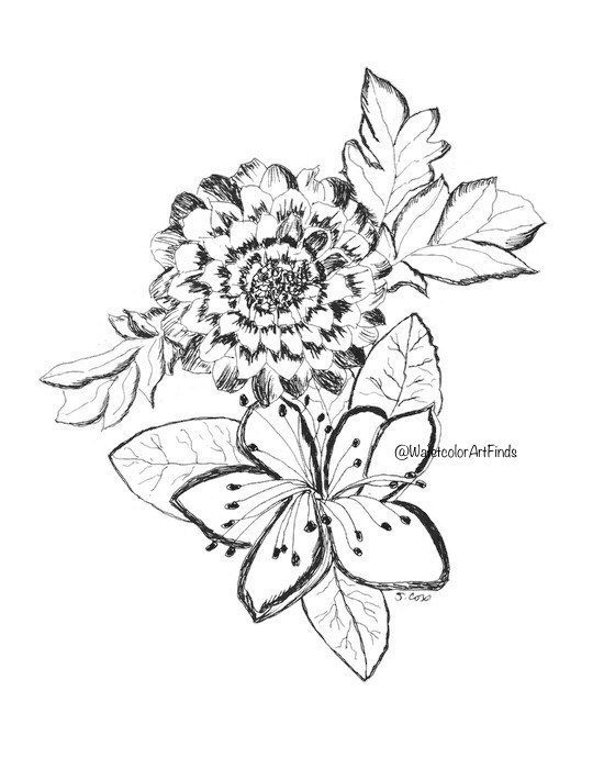 560x700 Pen And Ink Drawing, Ink Flowers, Floral Print, Original Floral