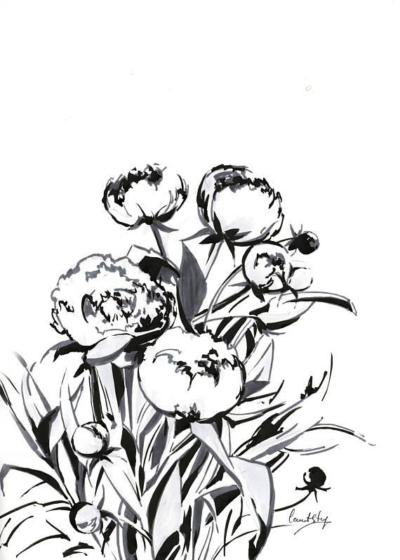 570x797 Peonies Modern Ink Drawing Original Artwork Flowers Black