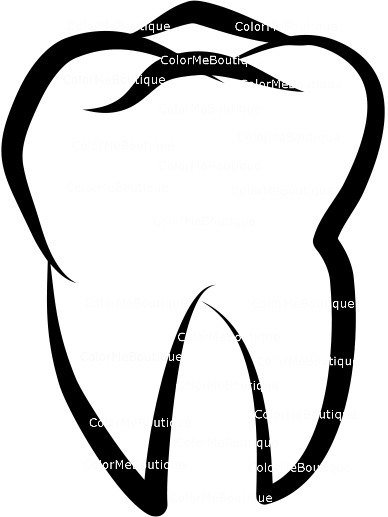 388x517 Tooth Molar Clipart