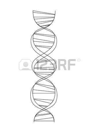 345x450 Molecule Body Concept Of The Human Dna Royalty Free Cliparts