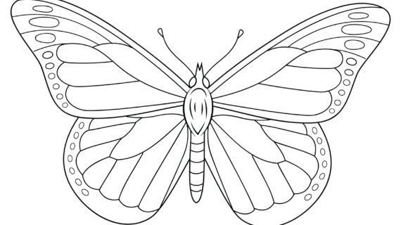 570x320 Monarch Butterfly Line Drawing Monarch Butterfly Coloring Page
