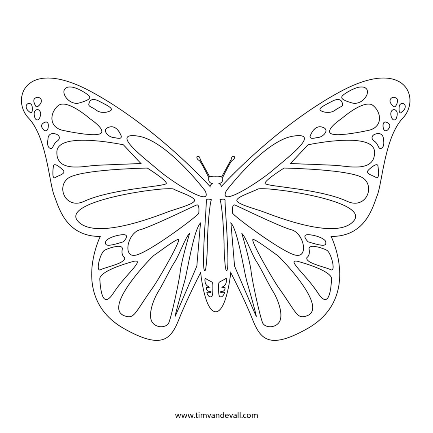 1500x1500 Monarch Butterfly Line Drawing Monarch Butterfly Stencil Printable