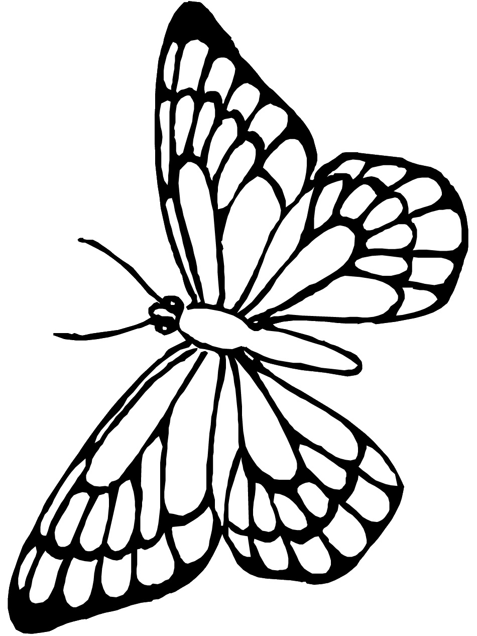 950x1266 Butter Coloring Pages Monarch Butterfly Template Clip Art