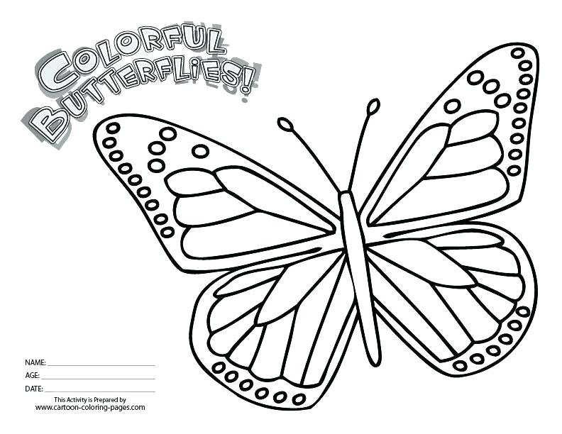 Monarch Caterpillar Drawing at GetDrawings.com | Free for personal ...