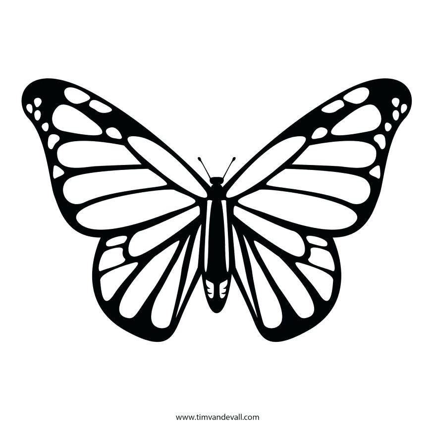 878x878 Monarch Butterfly Coloring Page For Butterfly 4 Monarch Butterfly