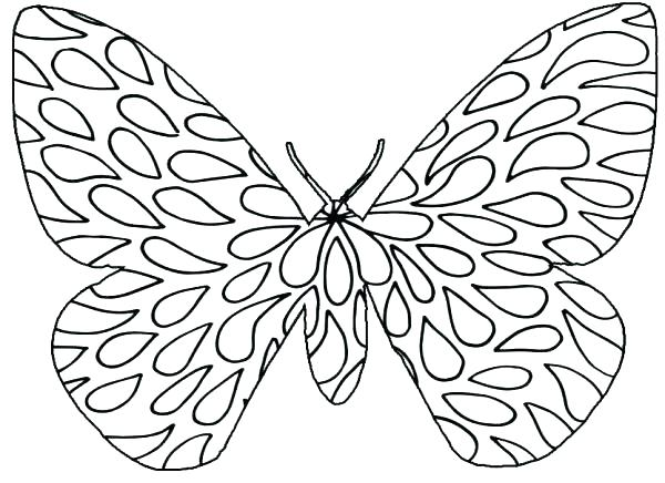 600x436 Butterfly Clip Coloring Page Cute Butterfly Line Drawing Butterfly
