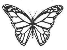 236x176 Monarch Butterfly Coloring Page Butterfly Art
