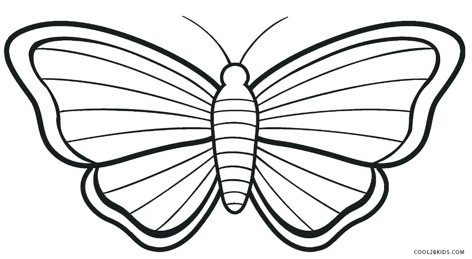 950x522 Monarch Butterfly Coloring Pages Monarch Butterfly Line Drawing