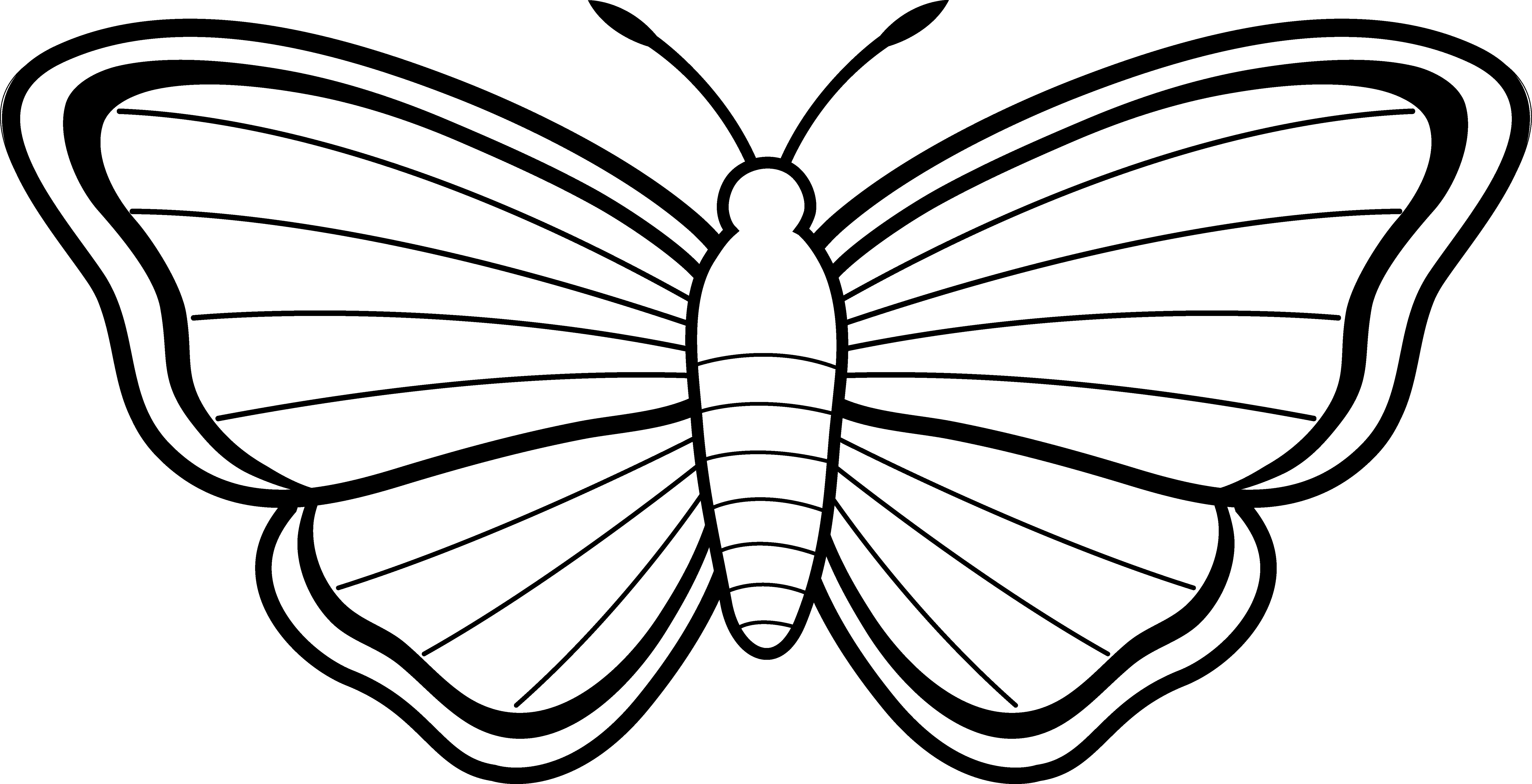 6629x3394 Monarch Butterfly Clipart Printable