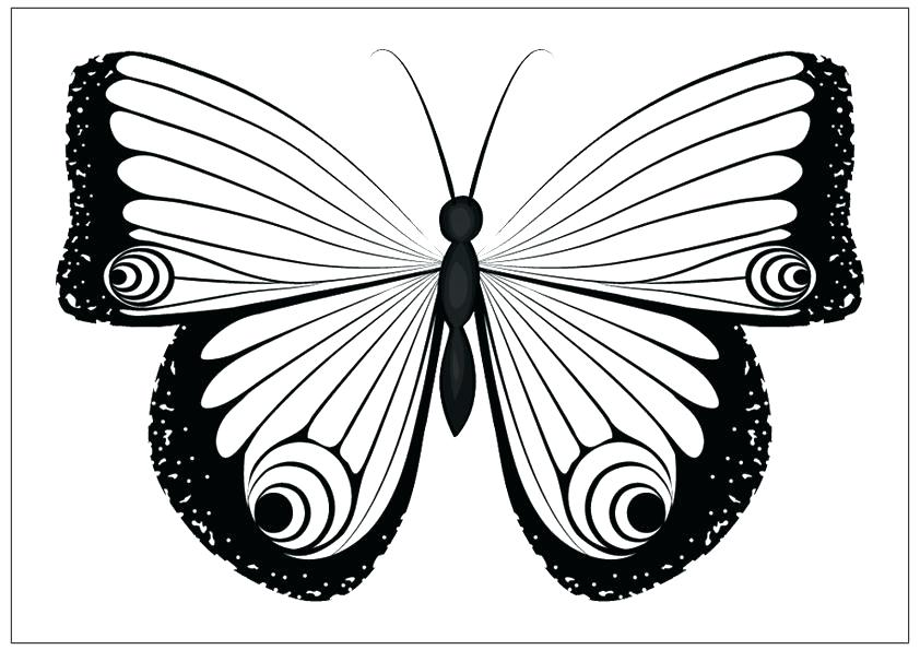 842x595 Monarch Butterfly Coloring Page Murs
