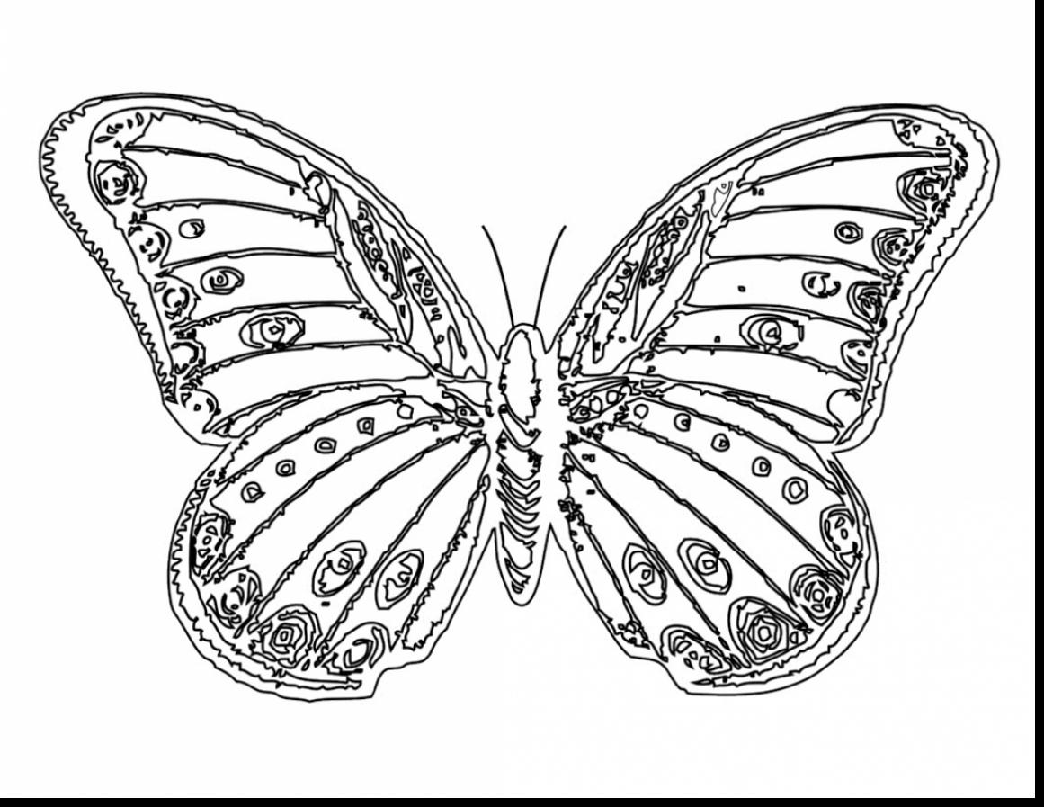 1161x897 Superb Monarch Butterfly Coloring Pages With Coloring Pages