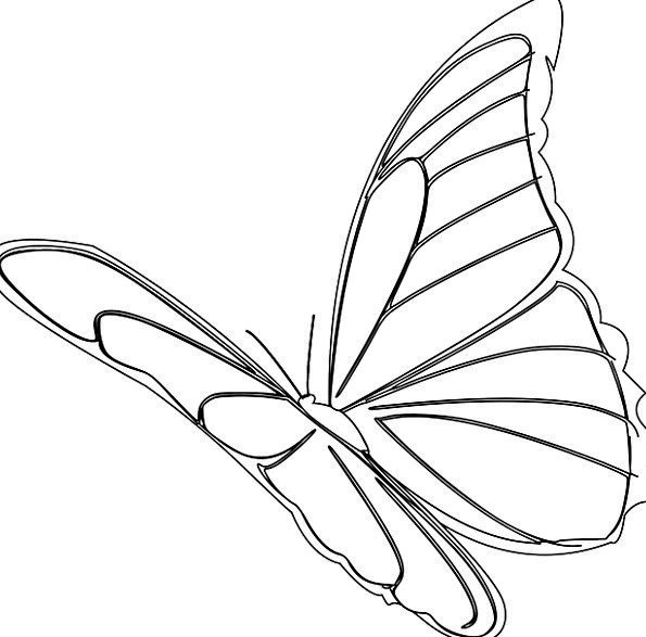 595x587 Butterfly, Hovering, Insect, Flying, Monarch, Ruler, Bug, Outline