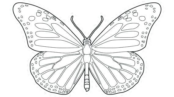 570x320 Butterfly Coloring Pages Preschool Monarch Page Line Drawing