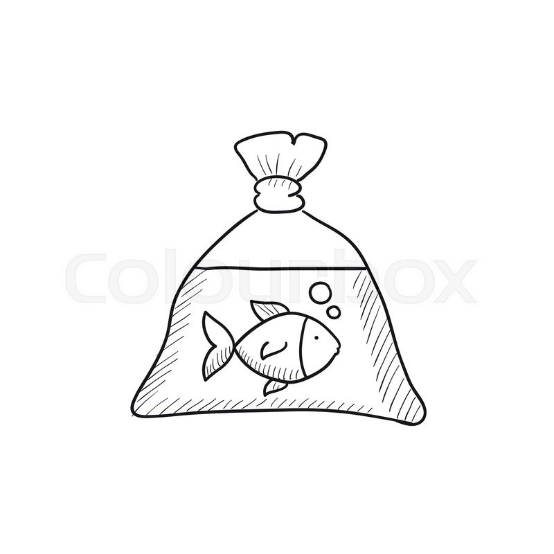 800x800 Fish In Plastic Bag Vector Sketch Icon Isolated On Background