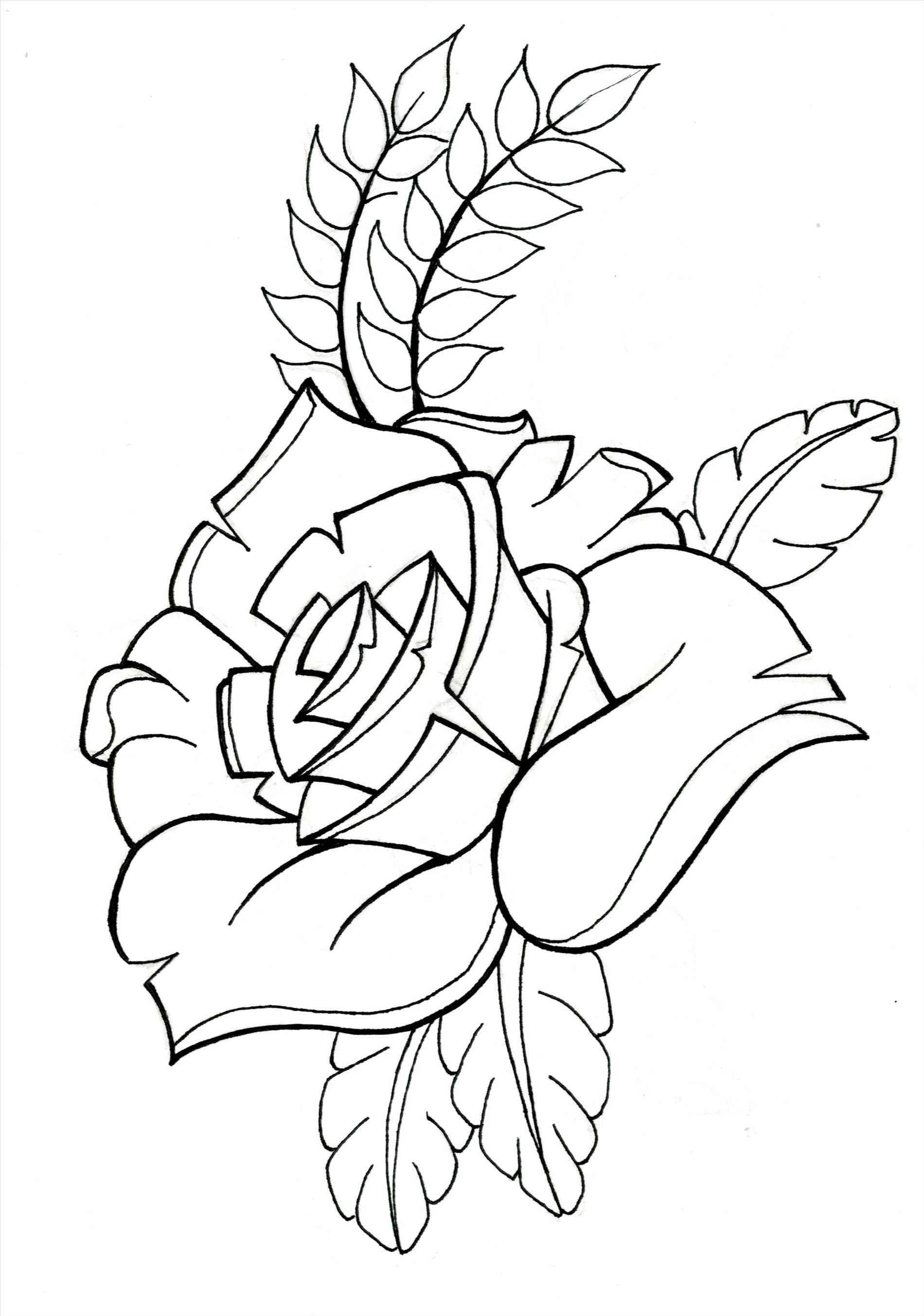 1900x2707 Branding Money Rose Drawing Outline Tommorfitt Animation Money