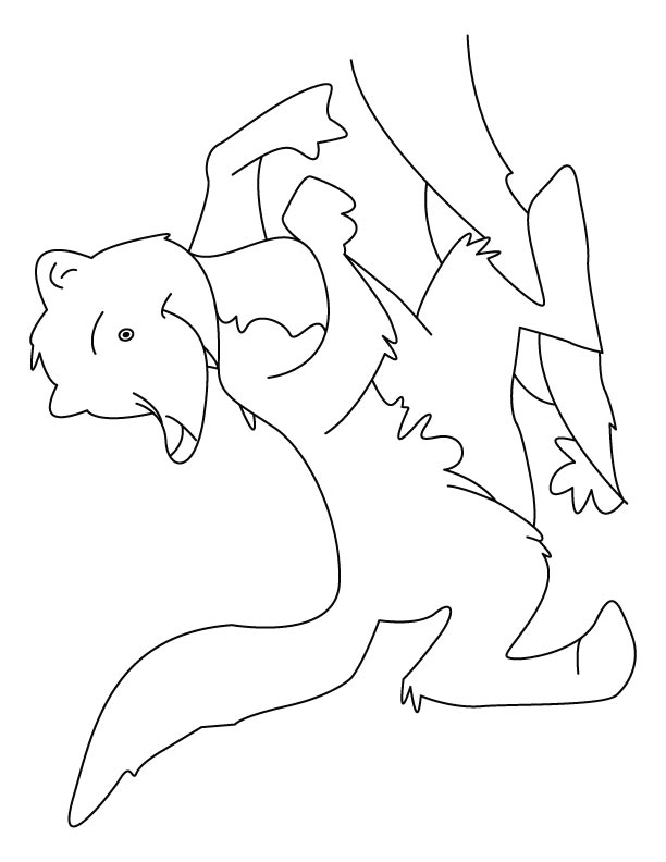 612x792 Giggling Mongoose Coloring Pages Download Free Giggling Mongoose