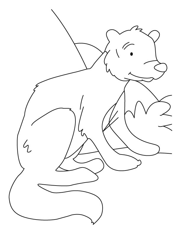 612x792 White Tailed Mongoose Coloring Pages Download Free White Tailed