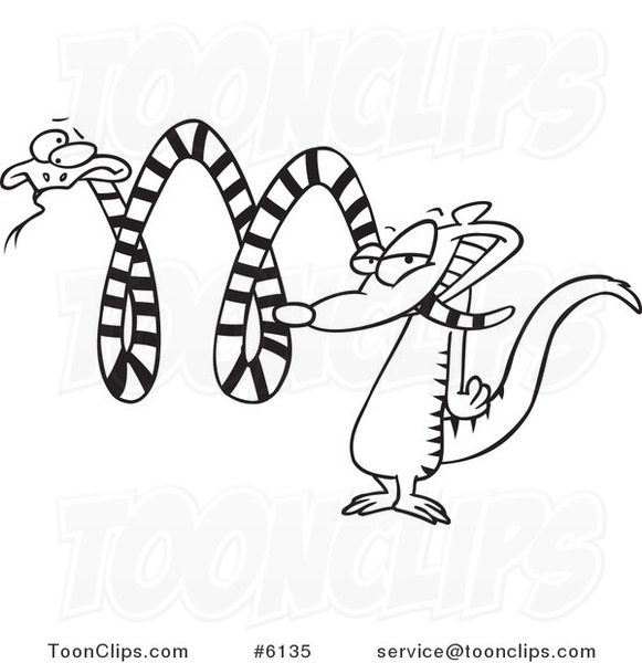 581x600 Cartoon Blacknd White Line Drawing Of Mongoosettacking
