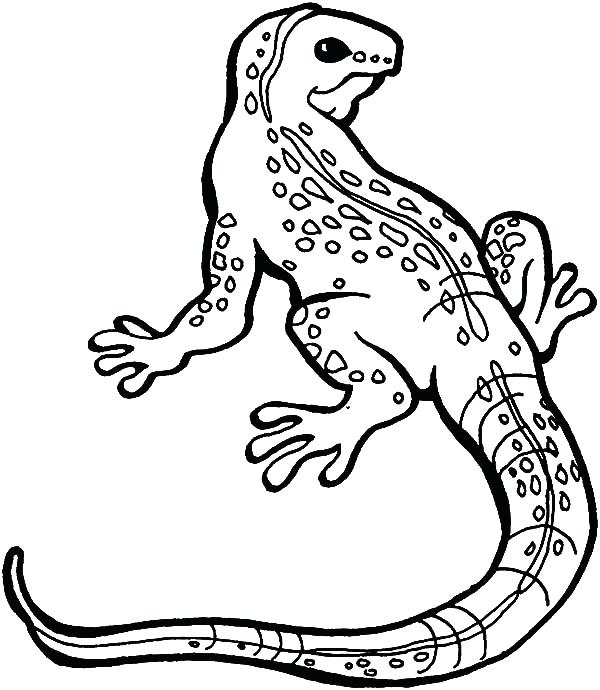 600x690 Amazing Spider Man Lizard Coloring Pages Great Monitor Download