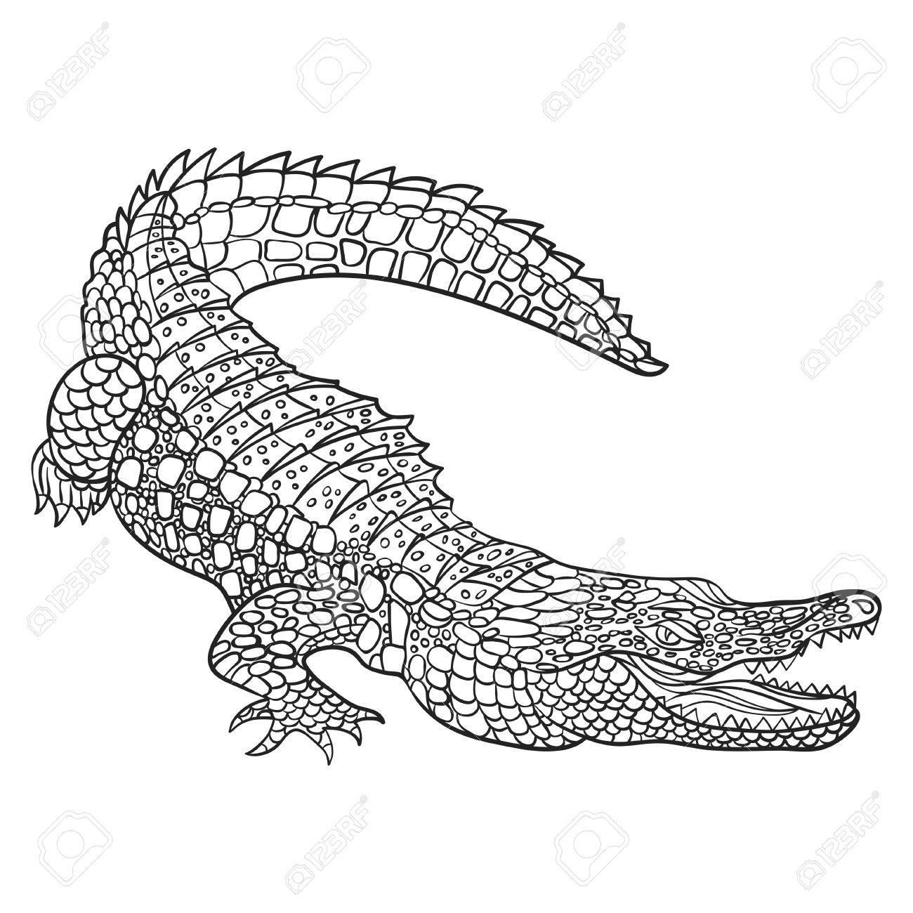 1300x1300 Vector Monochrome Hand Drawn Illustration Of Crocodile. Coloring