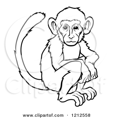450x470 of monkey outline drawing