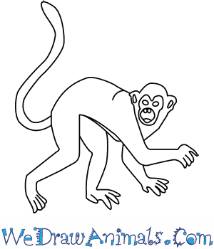 300x350 How To Draw A Golden Snub Nosed Monkey