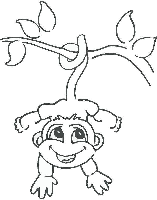 628x798 drawn monkey