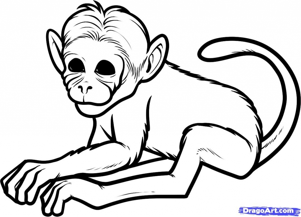 1024x737 Easy Monkey Drawing How To Draw Cartoons Monkey Easy Step Step