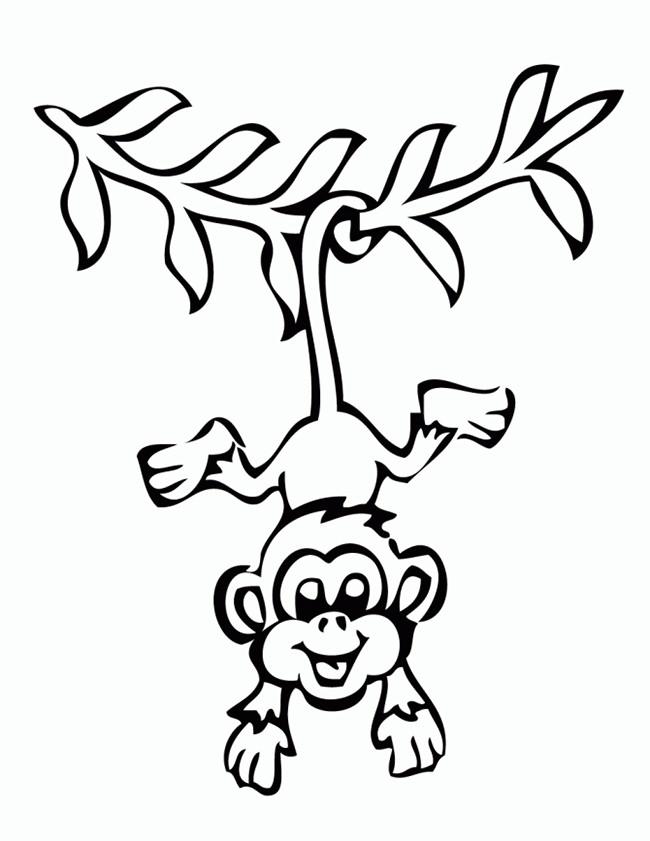 650x841 Monkey Template