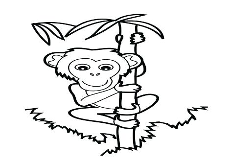 476x333 Monkey Color Page Coloring Pages Of Monkeys Monkey Coloring