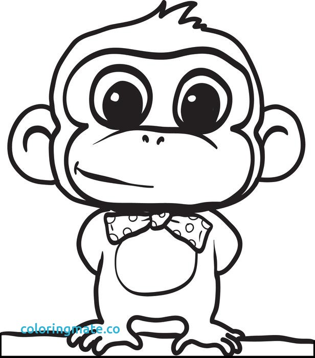 616x700 Coloring Pages Monkeys Fresh Monkey Printable Coloring Pages