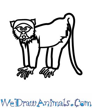 300x350 How To Draw A Blue Monkey