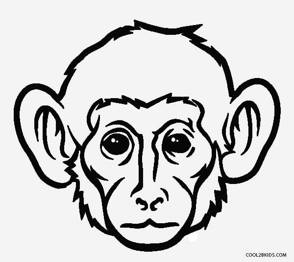 600x534 Monkey face coloring page free printable monkey coloring pages for