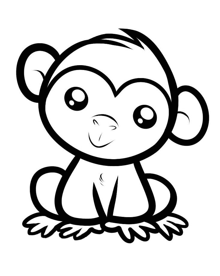 734x919 Monkey
