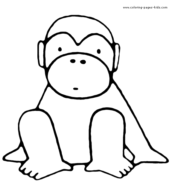 575x629 Monkey