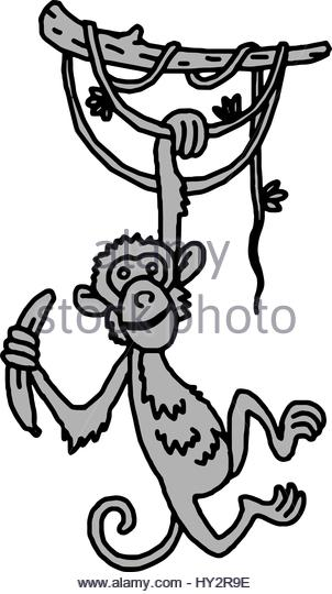 302x540 Monkey Hanging By Tail Stock Photos Amp Monkey Hanging By Tail Stock
