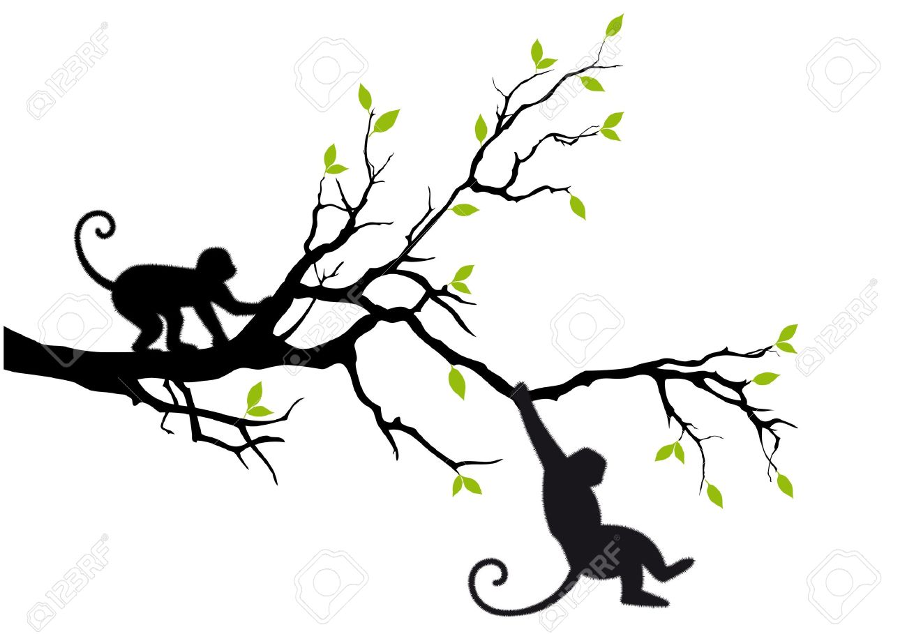1300x909 Monkey Hanging On Tree Branch Royalty Free Cliparts, Vectors,