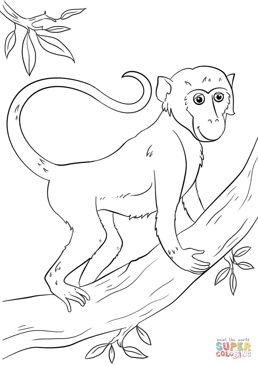 849x1200 Cartoon Monkey On Tree Coloring Page Free Printable Coloring Pages