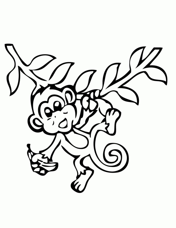 Monkey Hanging From Tree Drawing at GetDrawingscom Free for