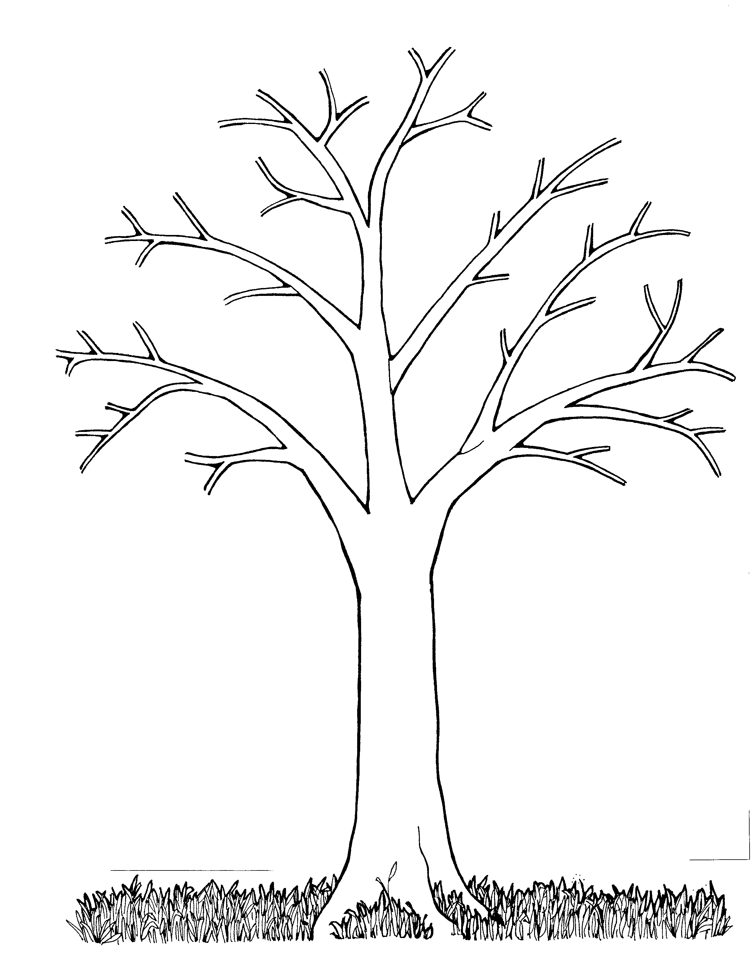 2495x3216 Fall Tree Coloring Pages Trees Out Leaves Of A Plants Monkey