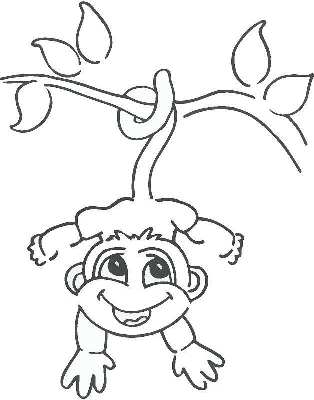 628x798 Coloring Pages Monkeys Trees