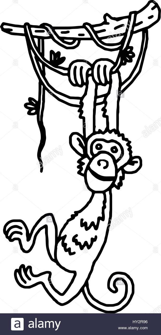 668x1390 Cute Baby Monkey Hanging On Tree Stock Vector Art Amp Illustration