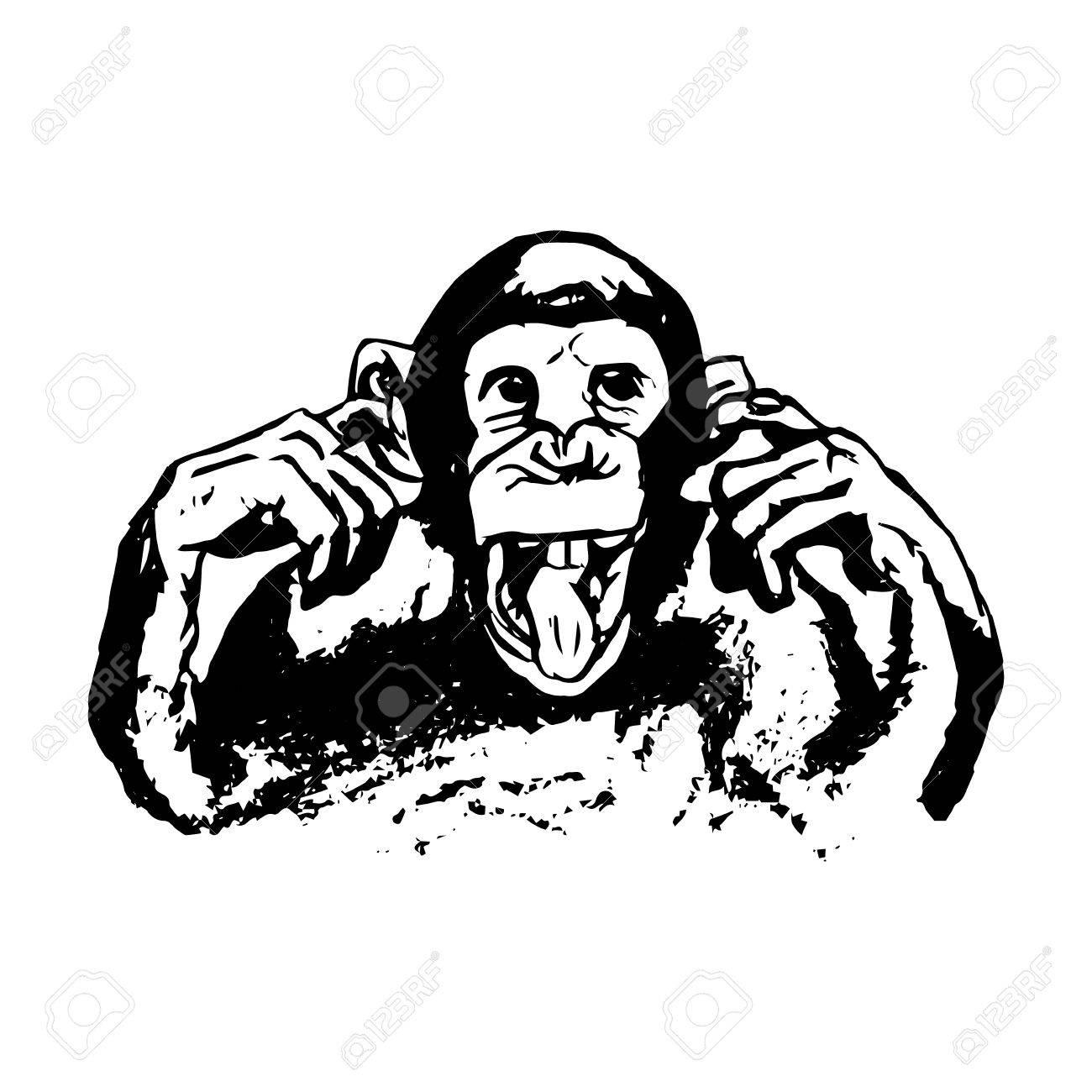 1300x1300 Graphic Image Of A Monkey. Monkey Showing Tongue, Grimace. Monkey