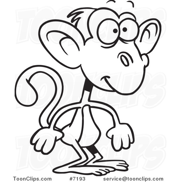581x600 Cartoon Black And White Line Drawing Of A Standing Monkey