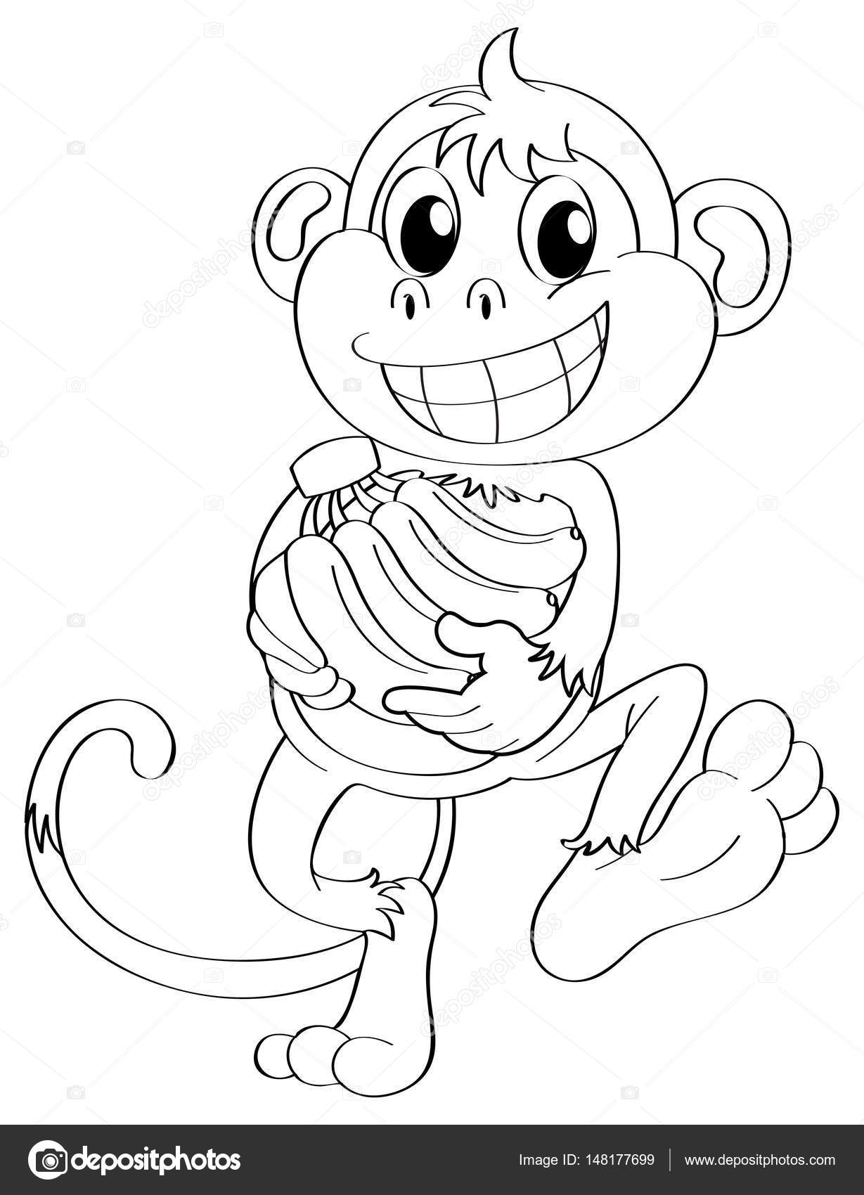 1229x1700 Animal Outline For Monkey And Bananas Stock Vector