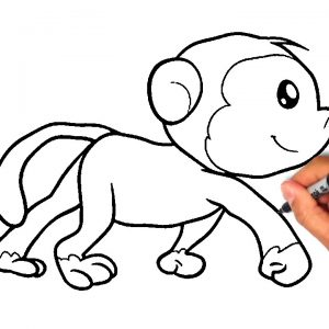 300x300 How To Draw A Monkey For Kids How Kids Adult