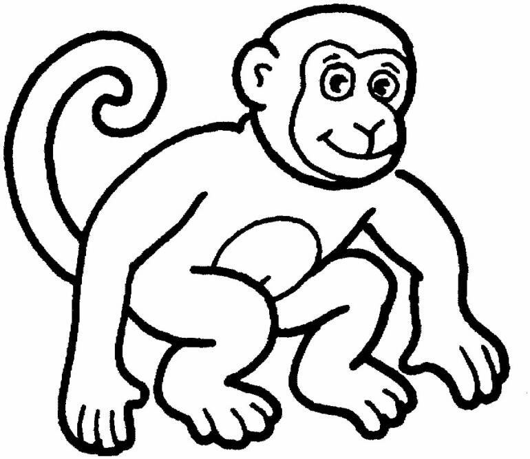 770x667 Best Simple Monkey Coloring Pages Free 2761 Printable