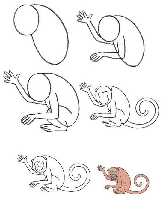 544x663 Draw A Monkey Baby Stuffs Babies