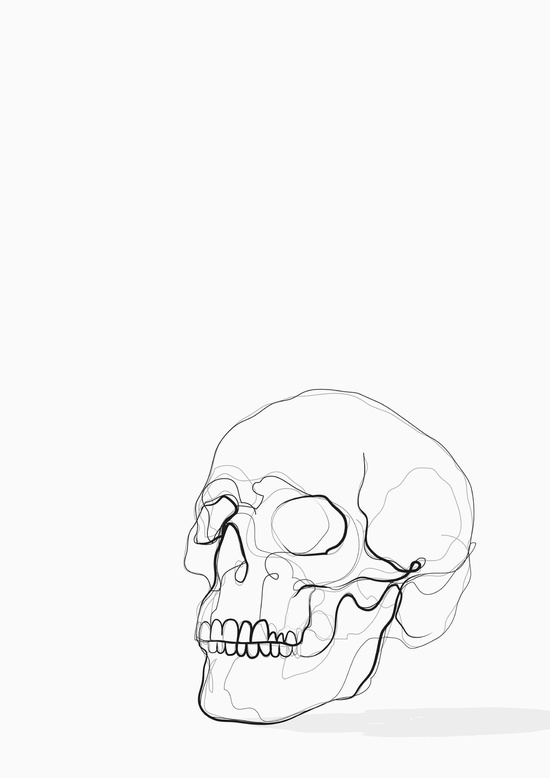 550x778 Skull Line Drawing Art Print Kerryn Kisbey Green Faces