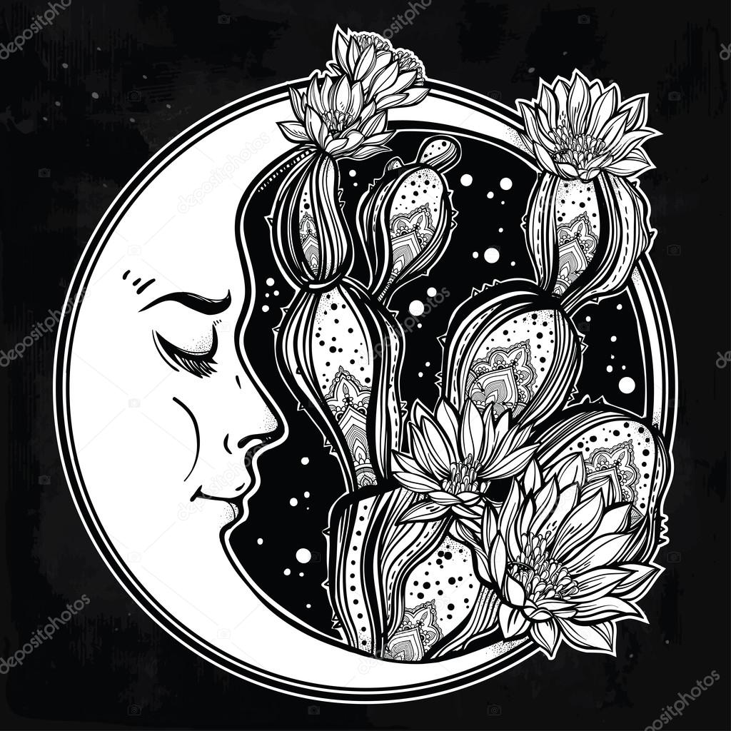 1024x1024 Hand Drawn Romantic Drawing With Moon And Cactus. Stock Vector